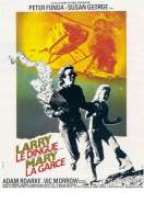 Affiche du film Larry le Dingue et Mary la Garce