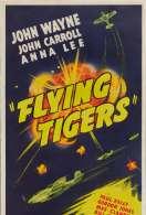 Les Tigres Volants, le film