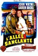 Affiche du film L'allee Sanglante