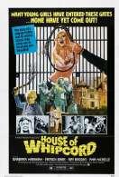 Affiche du film Flagellations