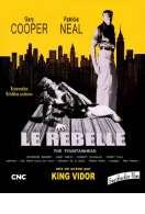 Le Rebelle, le film