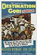 Affiche du film Destination Gobi