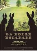 La Folle escapade, le film