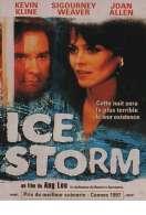 Affiche du film Ice storm