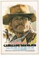 Affiche du film Chino