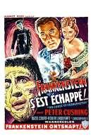 Affiche du film Frankenstein s'est �chapp�