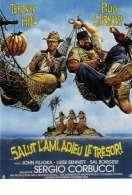 Affiche du film Salut l'ami Adieu le Tresor