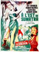 Affiche du film A l'est de Sumatra