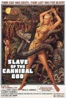 Affiche du film La montagne du Dieu Cannibale