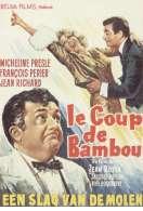 Affiche du film Le Coup de Bambou