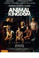 Animal Kingdom, le film