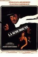 Affiche du film La scoumoune
