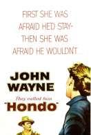 Hondo l'homme du Desert, le film