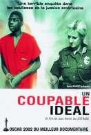 Un coupable idéal, le film