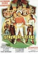 Affiche du film Serenade Au Texas