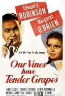 Nos Vignes Ont de Tendres Grappes, le film