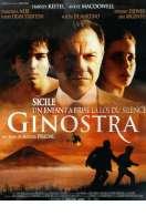 Ginostra, le film