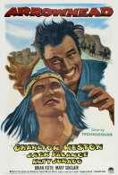 Affiche du film Le sorcier du Rio Grande