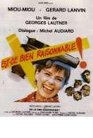 Affiche du film Est Ce Bien Raisonnable