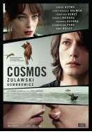 Affiche du film Cosmos