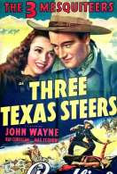 Three Texas Steers, le film