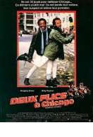 Deux flics a chicago, le film