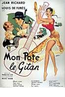 Affiche du film Mon Pote le Gitan