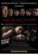 Affiche du film Les Amours secr�tes