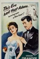 Affiche du film Adam et Evelyne