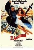 Affiche du film L'animal