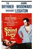 Affiche du film Le Bruit et la Fureur