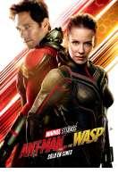 Ant-Man et la Guêpe, le film
