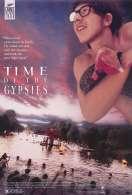 Affiche du film Le temps des Gitans