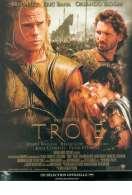 Troie, le film