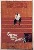 Affiche du film Doux oiseau de jeunesse