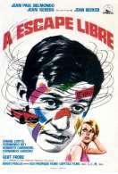 Affiche du film Echappement Libre