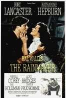 Affiche du film Le Faiseur de Pluie