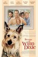 Affiche du film Winn-Dixie mon meilleur ami