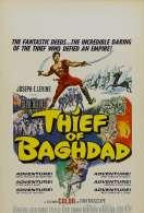 Le Voleur de Bagdad, le film