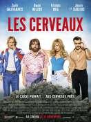Affiche du film Les Cerveaux