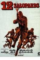 Les douze salopards, le film