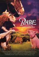 Affiche du film Babe