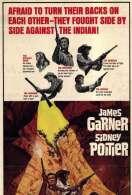 Affiche du film La bataille de la vallee du diable