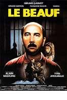 Affiche du film Le Beauf