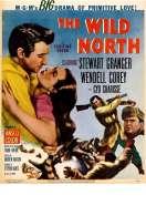 Affiche du film Au Pays de la Peur
