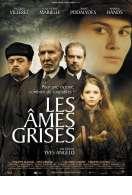 Affiche du film Les Ames Grises