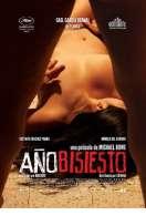Affiche du film Ann�e Bissextile