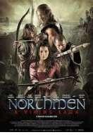 Affiche du film Northmen : Les Derniers Vikings
