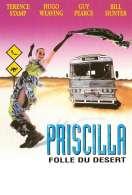 Les Aventures de Priscilla Folle du D, le film