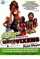 Affiche du film Ultravixens